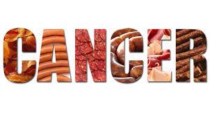 고기와 암
